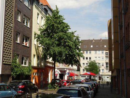 Tortenstück im Severinsviertel in Köln